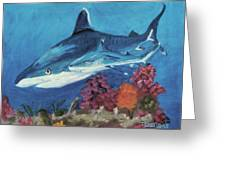 2 Reef Sharks Greeting Card