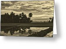 Rice Field Sunrise - Indonesia Greeting Card
