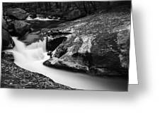 Roaring Brook Greeting Card