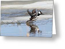 Running On The Water Greeting Card