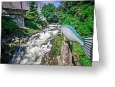 Salmon Hatchery Creek In Mountains Of Alaska Greeting Card