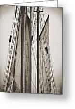 Schooner Pride Tall Ship Charleston Sc Greeting Card