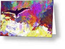 Seagull Blue Sky Freedom Air Fly  Greeting Card