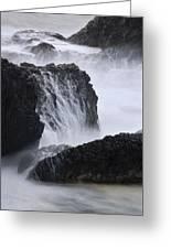 Seal Rock Waves And Rocks 4 Greeting Card