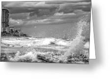 Serious Ocean Greeting Card