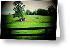 Shed And Fence Greeting Card by Michael L Kimble