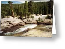 Sierra Nevada Mountain Stream Greeting Card