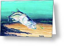 Snook On Jig Greeting Card