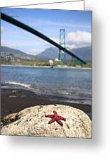 Starfish Stanley Park Vancouver Greeting Card