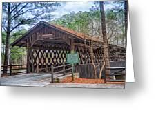 Stone Mountain Park In Atlanta Georgia Greeting Card