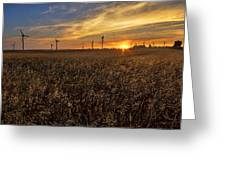 Sunrise Above Fields  Greeting Card