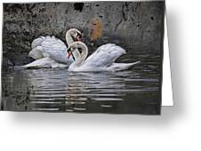 Tango Of The Swans Greeting Card