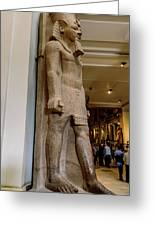 The Egyptian Museum Of Antiquities - Cairo Egypt Greeting Card