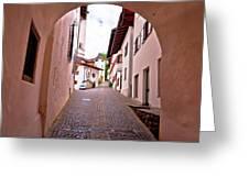 Town Of Kastelruth Street View Greeting Card