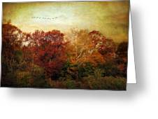 Treetops Greeting Card by Jessica Jenney