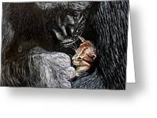 Tribute To Koko Greeting Card