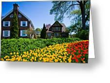 Tulips At Ottawa Tulips Festival Greeting Card