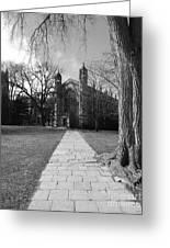 University Of Michigan Law Quad Greeting Card