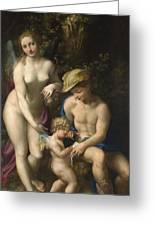 Venus With Mercury And Cupid The School Of Love Greeting Card