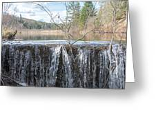 Vermont Swamp Greeting Card