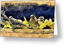 Vintage Bluebird Print Greeting Card