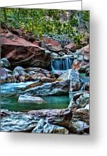 Virgin River Zion  Greeting Card