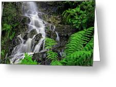 Waterfall In Cradle Mountain Greeting Card