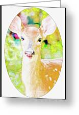 White-tailed Virginia Deer Fawn Greeting Card