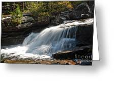 Wild Basin White Water Greeting Card by Brent Parks