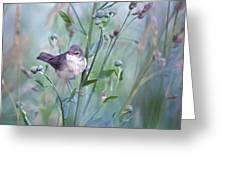 Wild Bird In A Natural Habitat Greeting Card