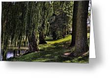 Willows And Oaks Greeting Card
