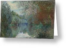 Willows At The Edge Of The Yerres Greeting Card