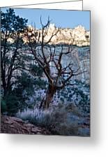 Winter At Grand Canyon Greeting Card