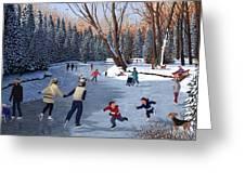 Winter Fun At Bowness Park Greeting Card