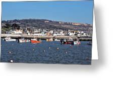 Winter Harbour - Lyme Regis Greeting Card