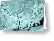 Winter Wonderland In Switzerland Greeting Card