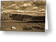 Yellowstone Sky Greeting Card