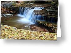 Zion Autumn Foliage Waterfall Greeting Card