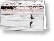 Private Beach Bastendorff Greeting Card