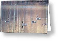 2003-geese Greeting Card