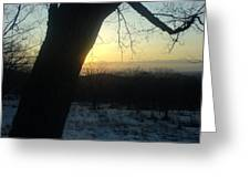 20090322 36 In Shadow Of Tree Before Sunset Greeting Card