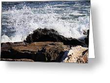 2010 Nh Seacoast 6 Greeting Card