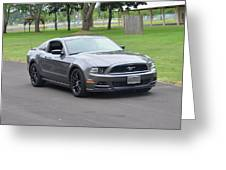 2014 Mustang Kindel Greeting Card