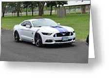 2015 Ford Mustang Gt James Tami Greeting Card