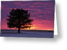 2015 New Year Sunset Greeting Card