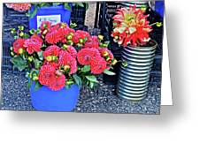 2016 Monona Farmer's Market Blue Bucket Of Dahlias Greeting Card