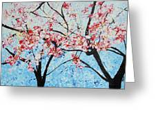 201726 Cherry Blossoms Greeting Card
