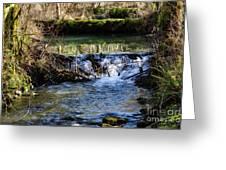 2018_2_12  Mountian Stream-4218 Greeting Card