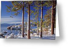 211257 Snow On Tree Sides Lake Tahoe Greeting Card