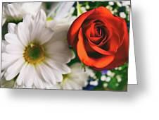 2179 Greeting Card